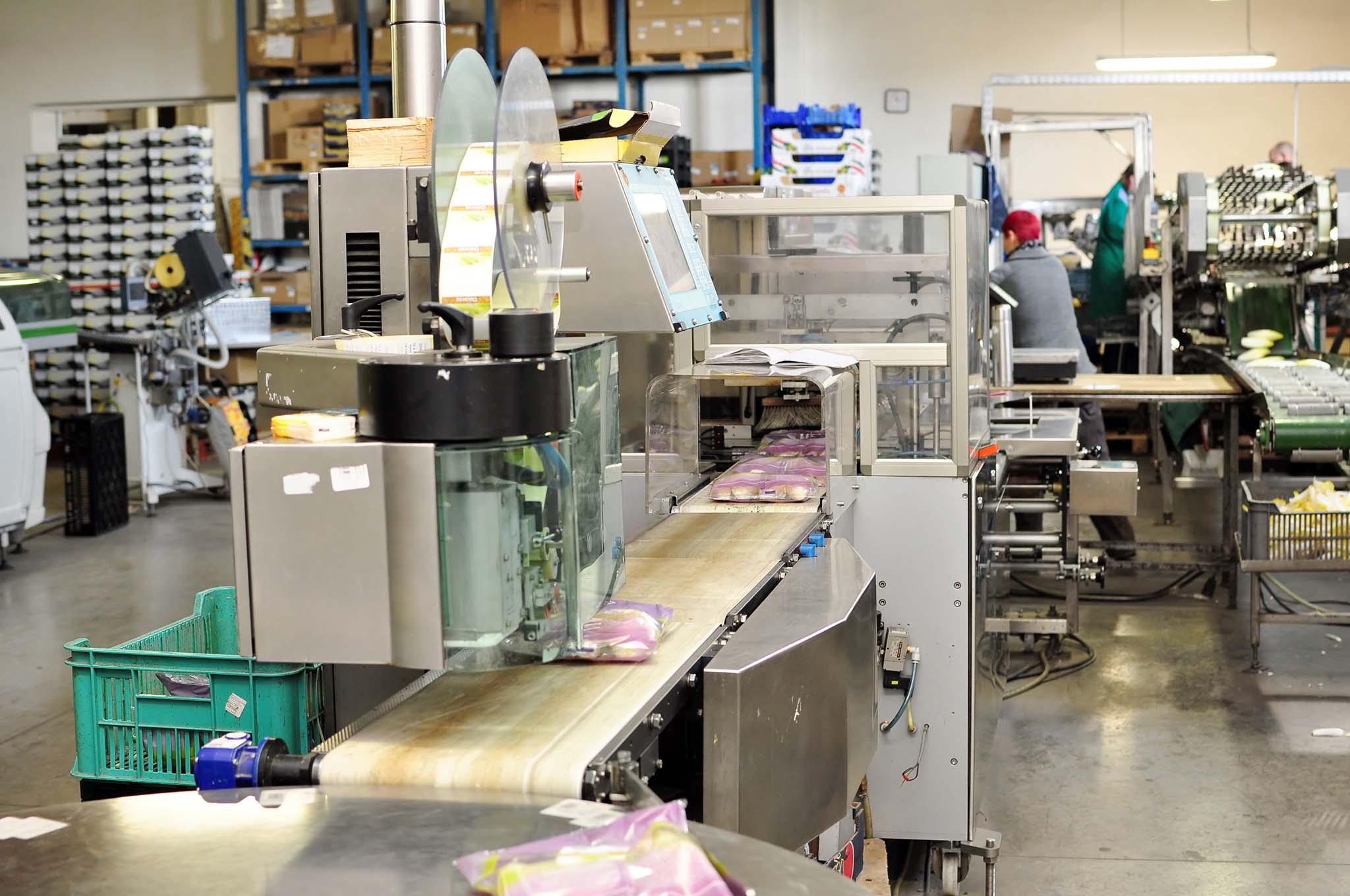 Verpackungsmaschine Lebensmittel Hygiene